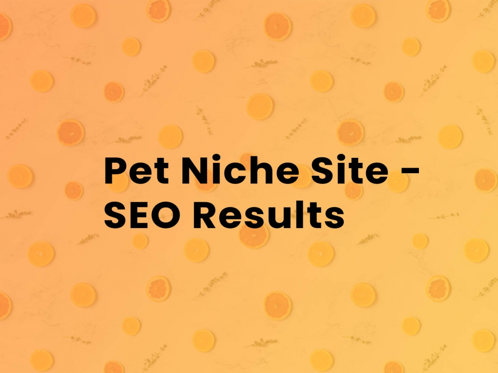 seo-results-for-a-pet-niche-site