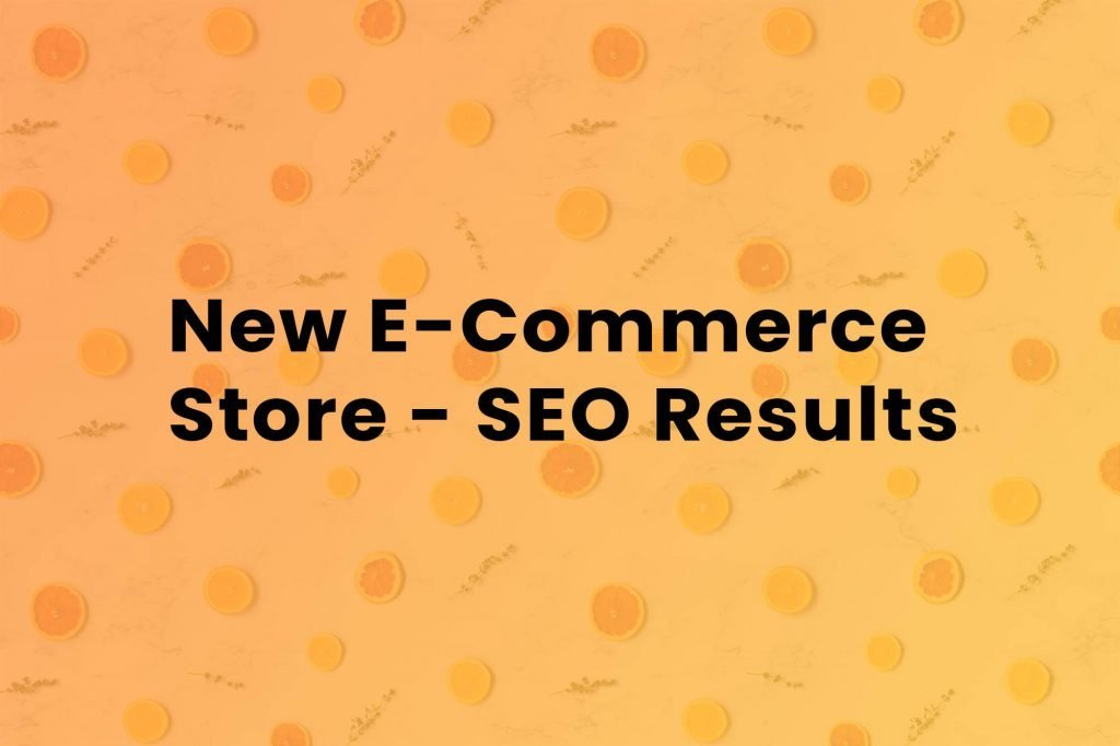 seo-results-for-a-new-e-commerce-store